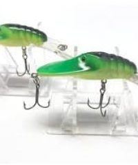 Bass Magnet Lures