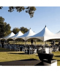 Ideal Canopy Tent And Structure