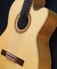 SAUMIER Stringed Instruments